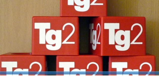 Super Buon Compleanno TG2. I suoi 40 anni in uno speciale Tv MS19